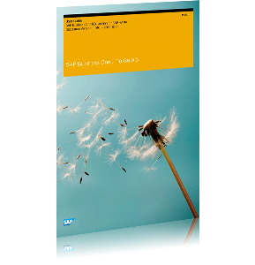 SAP Business One Cover