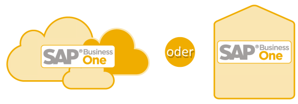 SAP Business One Cloud oder Server