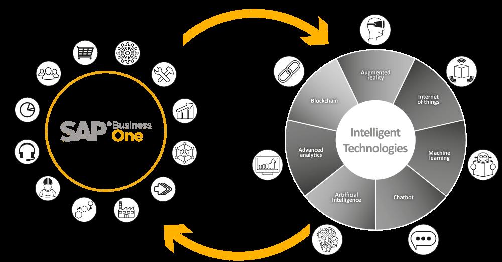 SAP Business One Summary