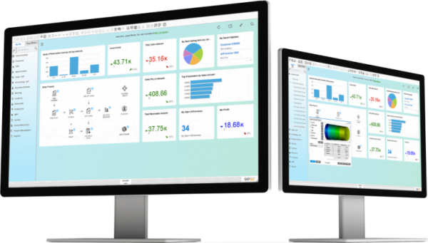 SAP Business One System