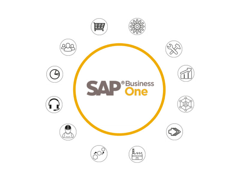 Module SAP Business One