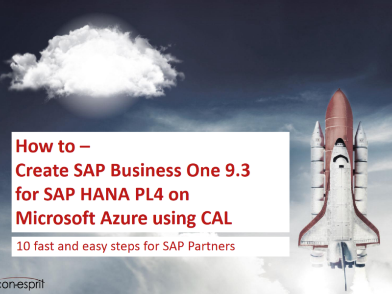 SAP Business One 9.3 How to