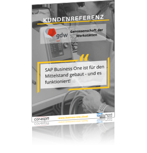 SAP Business One Kundenreferenz